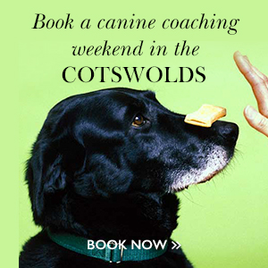 Cotswolds Training Weekend