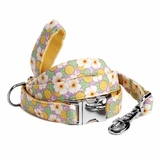 Jitterbug Dog Collar and Lead Set