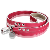 Oxford City Leash – Fuchsia