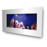 Small Mirror Wall Aquarium